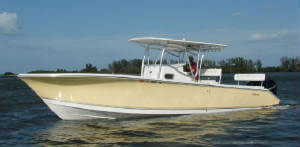 Fishing Charters Clearwater, Tampa, St Pete - Custom Palmetto 33ft